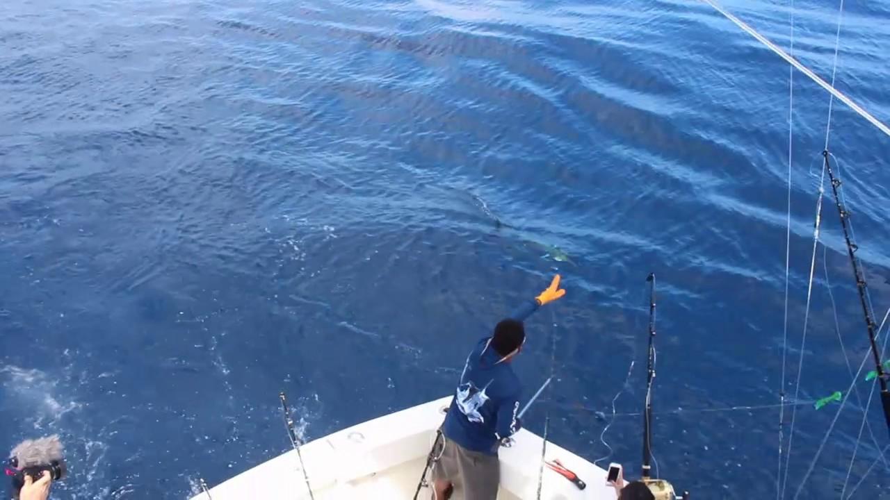 Experts fishing costa rica